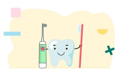 ¿Cuáles son los componentes más importantes de un cepillo de dientes?